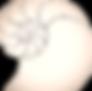 EBH%2520Logo_Image%25202_edited_edited.p
