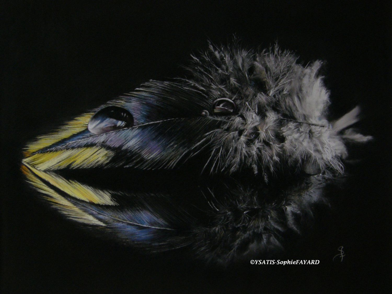 nuit blanche web