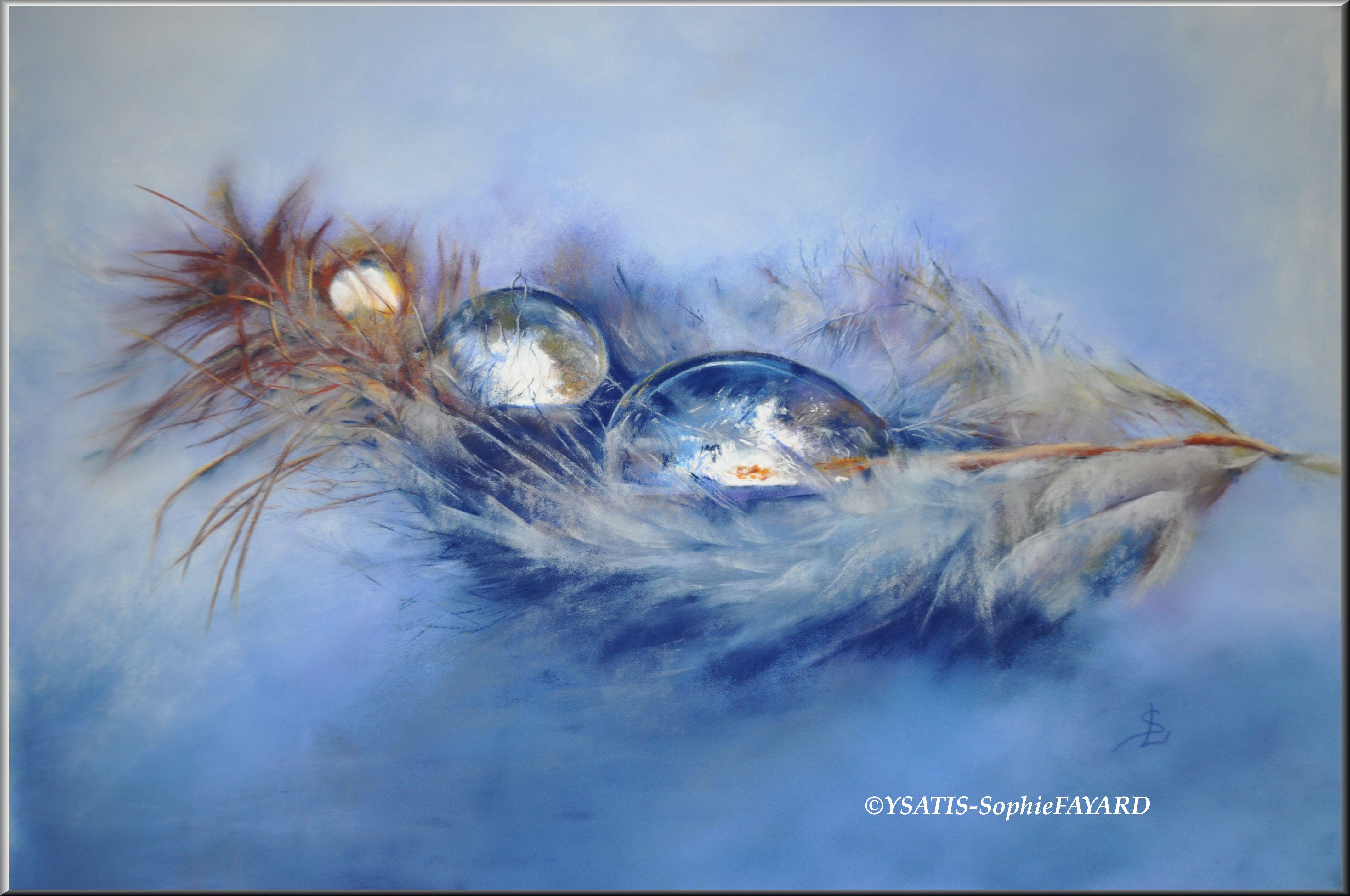 Fragilité, reflet de la beauté