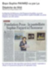 Article_Dépêche_du_midiWeb.jpg