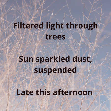 Day 9 - Haiku