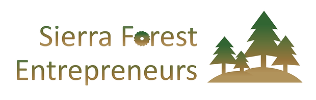 SFE-Logo.png