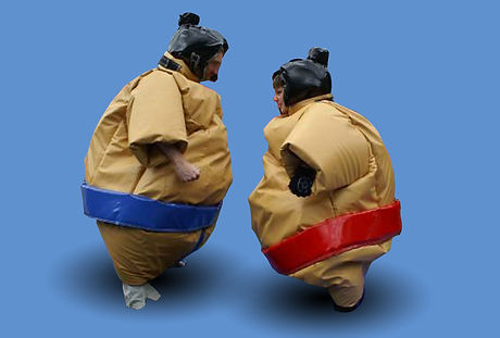 Padded Sumo Suits