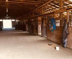 12x12 matted stalls