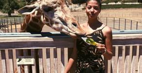 Take the Tour: Malibu Wine Safari