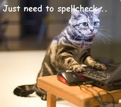 Cat-writing-skills.jpg