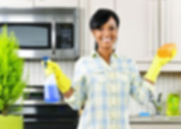 Book cleaning session in Palm Harbor