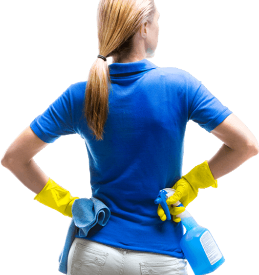 House Cleaning Lady Palm Harbor Florida