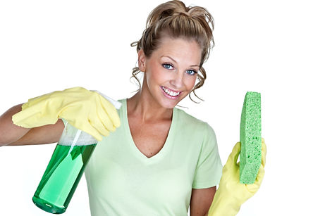 Palm Harbor House Cleaning