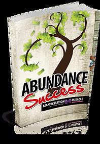 Abundance-Success-250.png