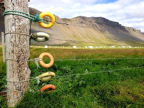 Við Rauðasand í Vestur-Barðastrandarsýslu, Iceland
