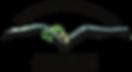 dutchpassion_logo_amsterdam-300x164.png