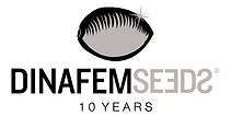 dinafem-seeds-celebrate-10-years_blog_fu