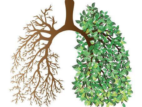 Luft nach oben – Geschichte, Gefahren und Tipps rund um's Atmen