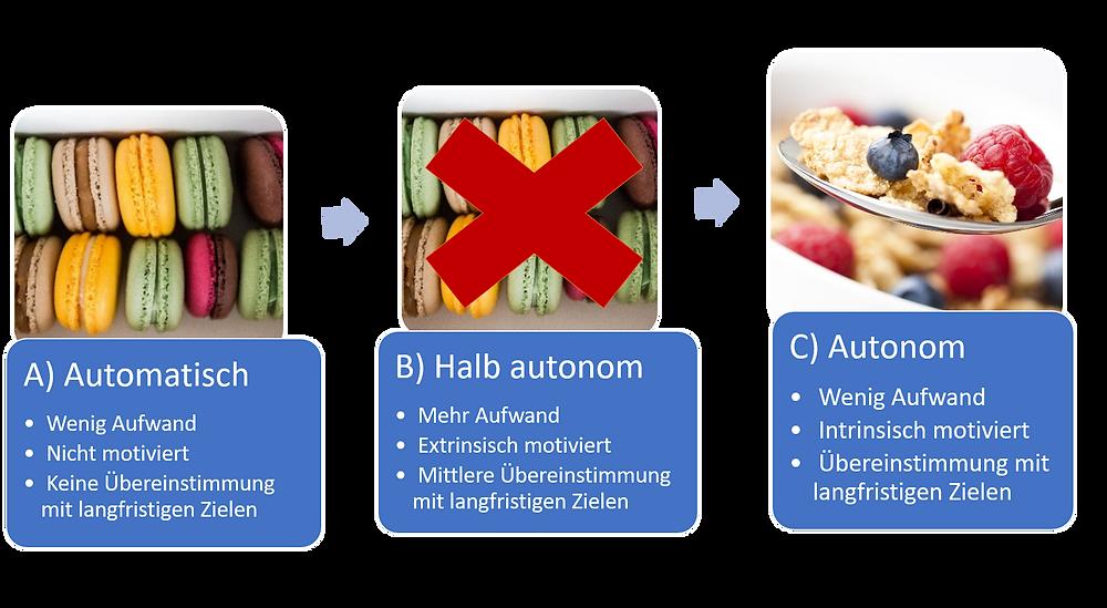 Automatisch zu Autonom Verhalten