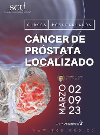 Curso Cáncer de Próstata Localizado.jpg