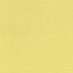 CLASSIC LINEN GOLD PEARL 227G 66X101,6