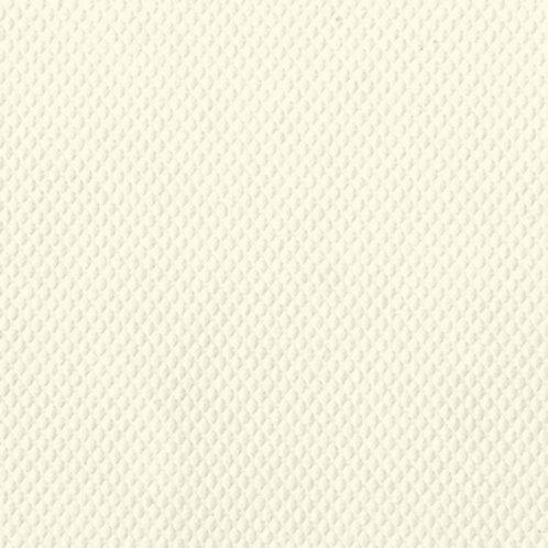 CLASSIC TEACHWEAVE BARE WHITE 270G 660X1016