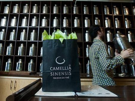 Les boutiques Camellia Sinensis avec l'Agence Magis