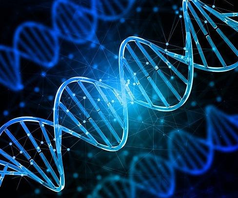 genetics6.jpg