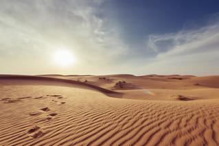 مادة جديدة تجمع الماء من العدم وبدون استخدام الطاقة – حتى وإن كنا في ولاية أريزونا الصحراوية الجافة