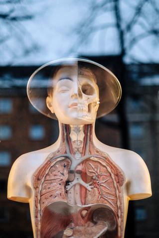 الذكاء الاصطناعي يتفوق على الأطباء الخبراء في تشخيص سرطان الجلد