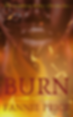 Burn Cover.png