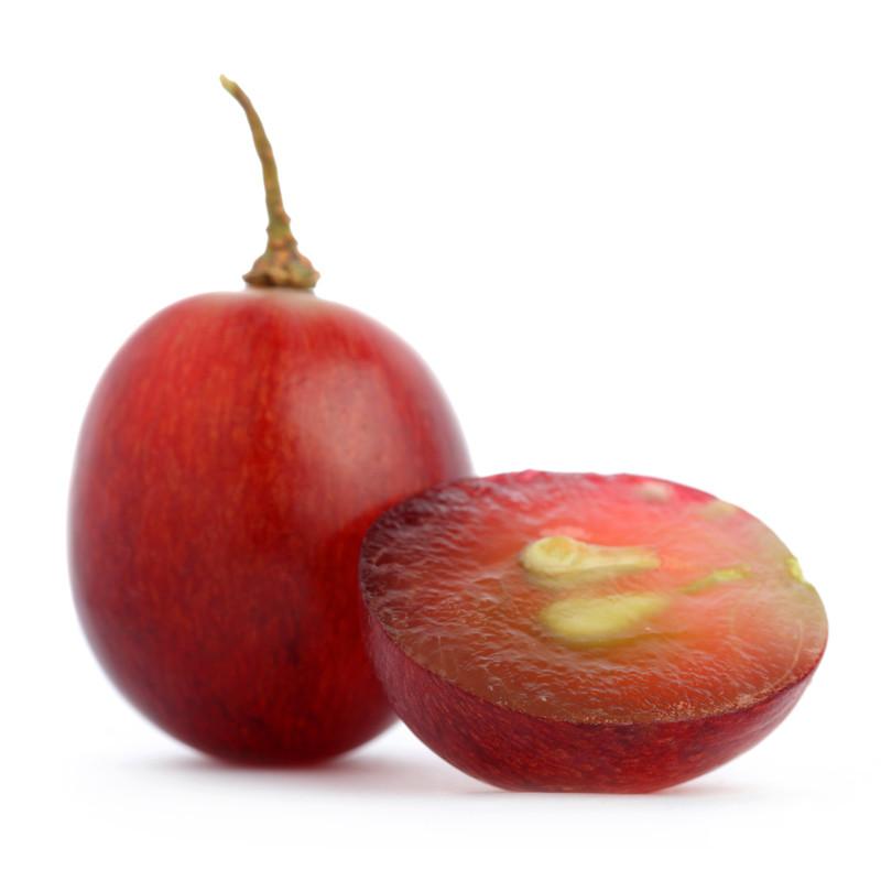 Ingredient_GrapeSeed.jpg