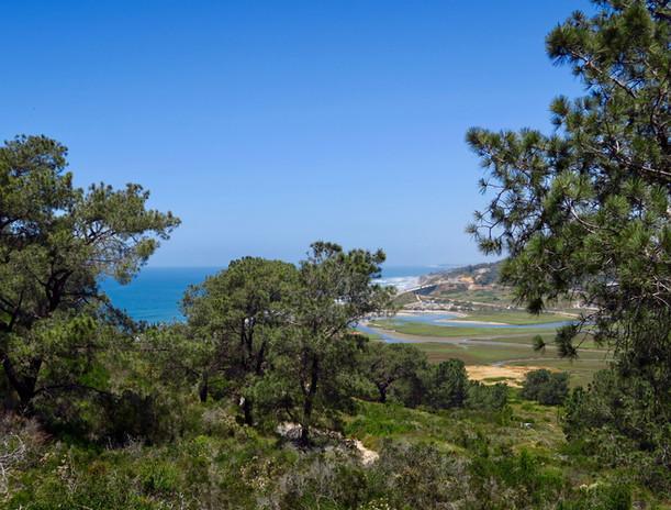 Looking back at Del Mar from Torrey Pines State Natural Reserve