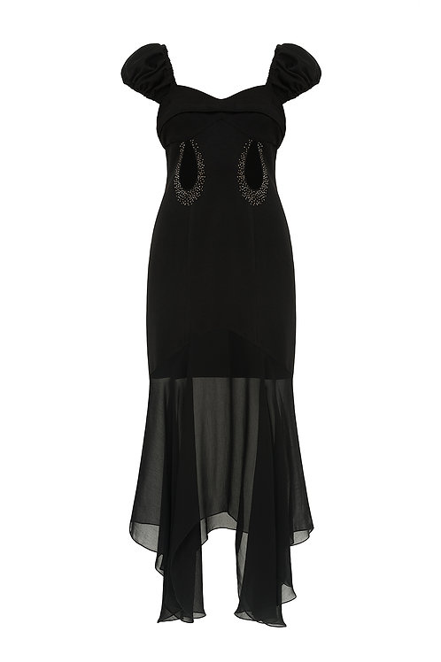 "Evening dress ""Black swen"""
