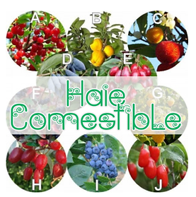 Logo_Prem_Page_Haie_Comestible_00000.png