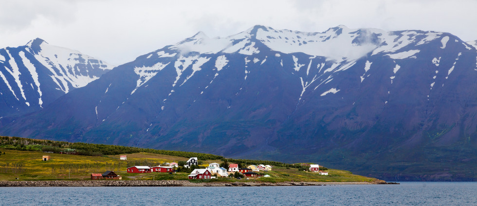 Iceland_07032017_Hrisy_586.jpg