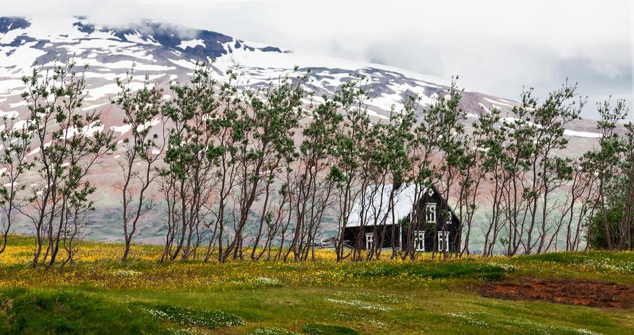 Iceland_715_island house.jpg