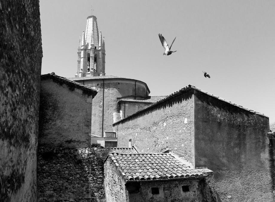 Girona with pigeons0756.jpg