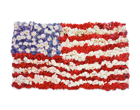 Flowered_American_Flag.jpg