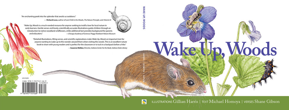 Wake Up Woods, a new Children's Book