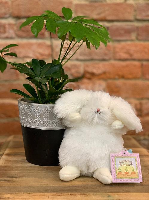 Wee Ittybit Plush Bunny