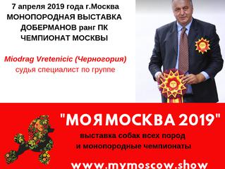 Приглашаем на монопородную выставку ПК - Чемпионат Москвы 2019