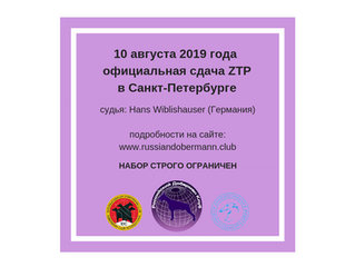 ZTP 2019, в Санкт Петербурге 10.08.2019