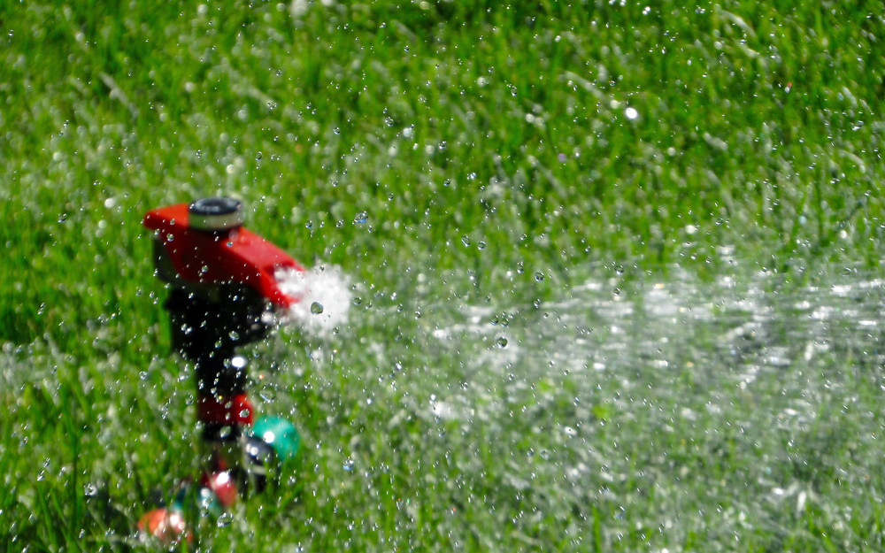 An in-ground sprinkler system waters a front lawn