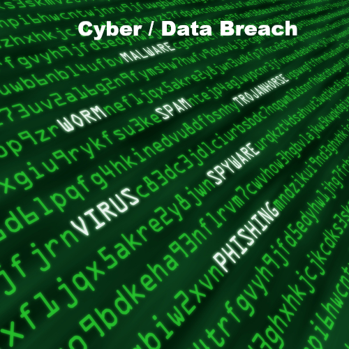 Cyber, Privacy & Data Breach