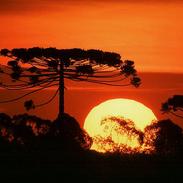 Klima_Naturali™____Parque_Estadual_das_L