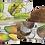 Thumbnail: Fruity Florinda 100g 果香