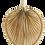 Thumbnail: Feuille de palmier