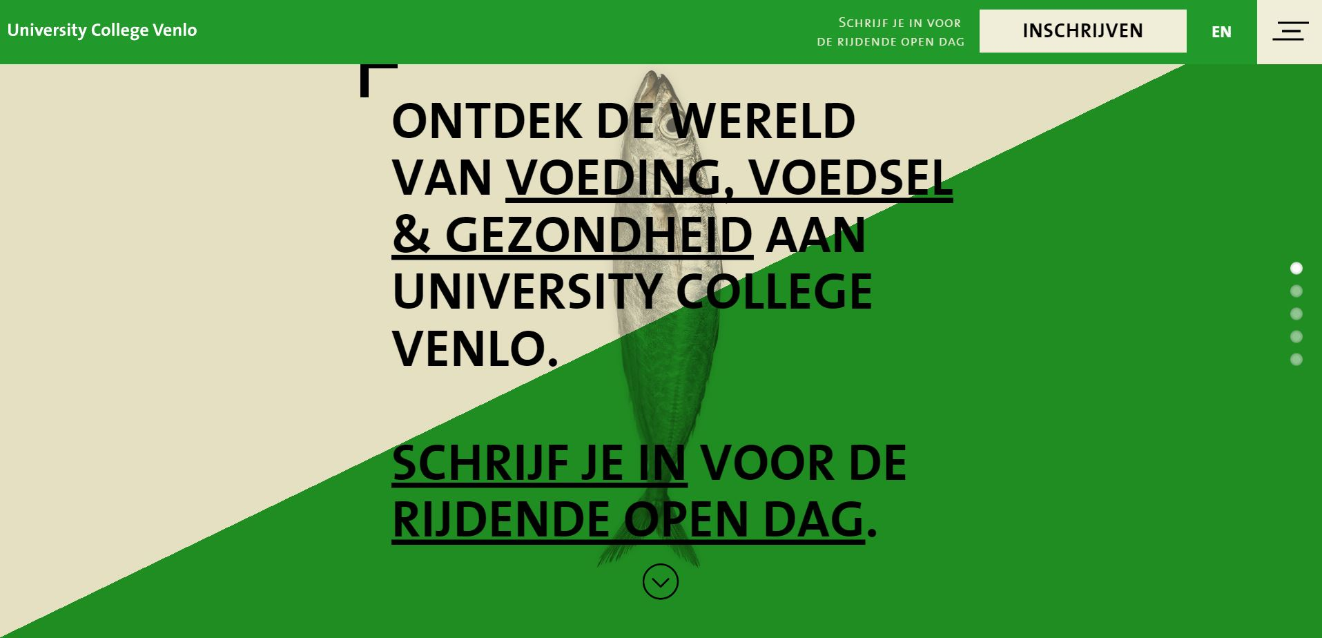 University College Venlo