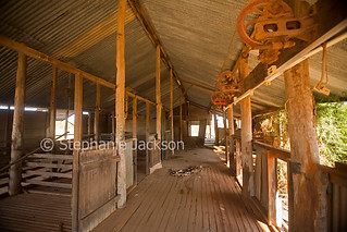 Interior of abandoned shearing shed / woolshed - IMG 9216
