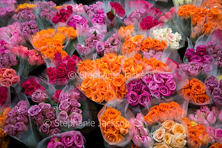 Cut flowers - bunches of roses - IMG 9575