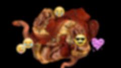 Ian Haig - organphilia 1.jpeg