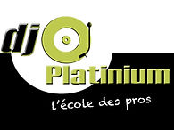 logo platinium.jpg