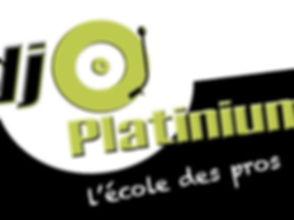 logo platinium_edited.jpg